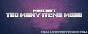 Minecraft Too Many Items
